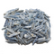 Blue Kyanite Rough - 1lb Lot
