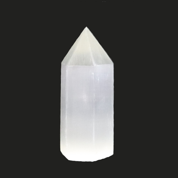 Selenite Crystal | Dinomite Rocks and Gems