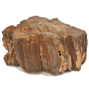 Petrified Wood, Utah - 15lbs
