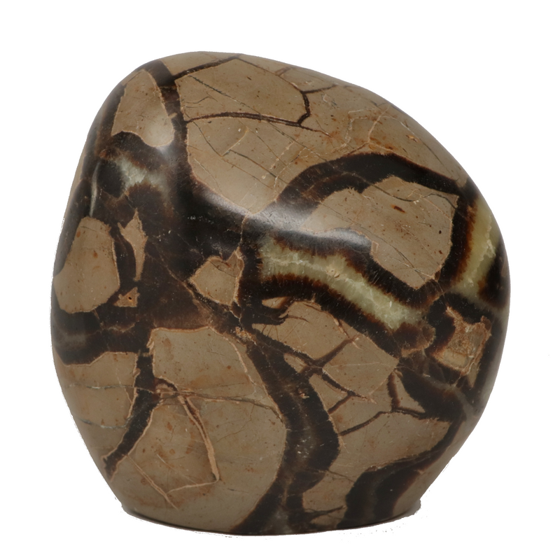 Septarian Dragon Stone Crystal - 3.3lbs