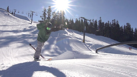How To Tamedog