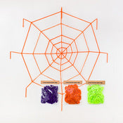 Colored Spider Web