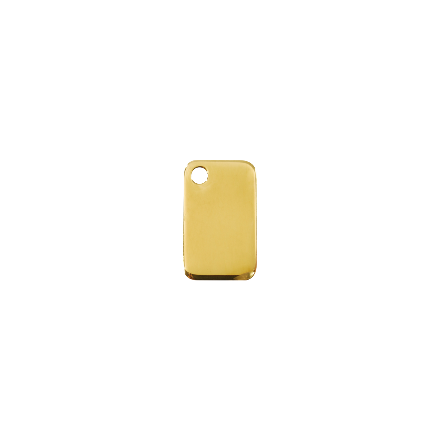 Rectangular Brass Pet Tag