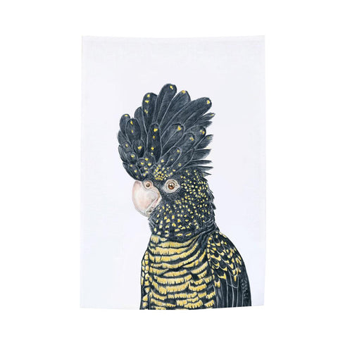 red-tailed black cockatoo tea towel