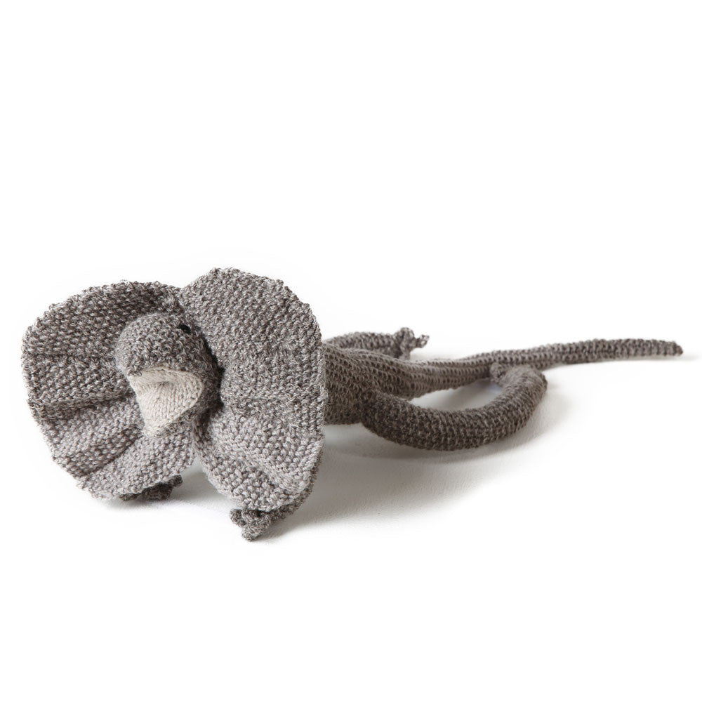 hand-knitted frilled neck dragon
