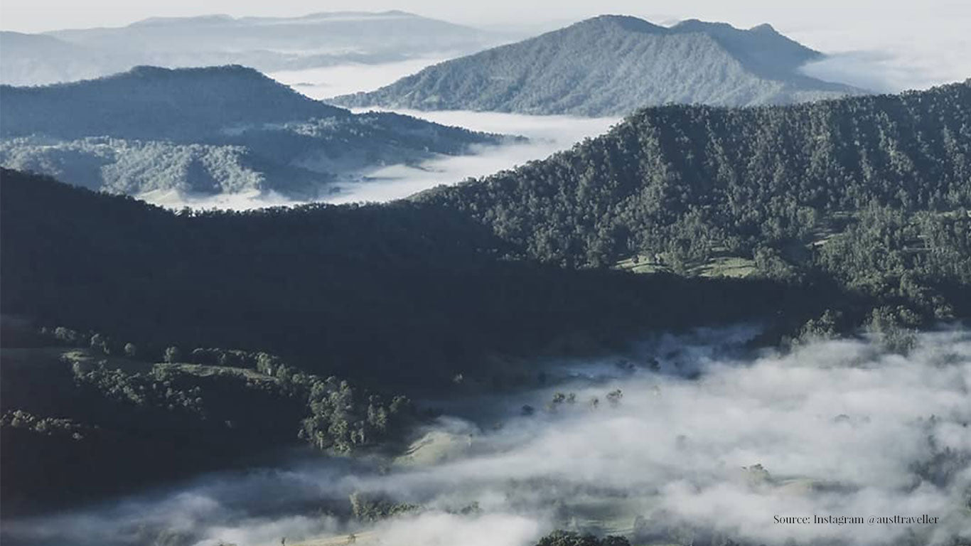 Nolle's Woodland - Traveller's Guide for Gold Coast Hinterland Road Trip