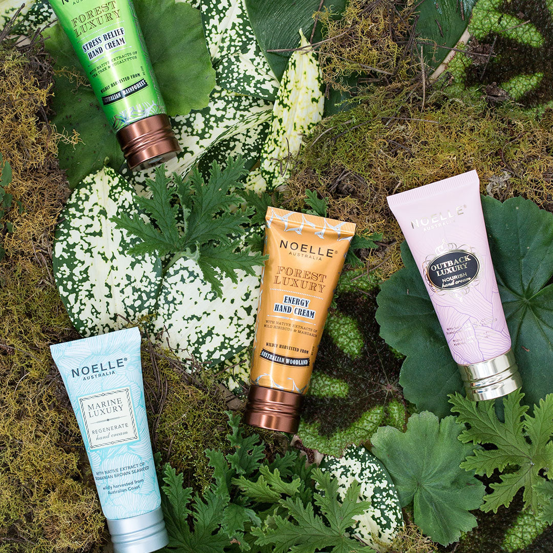Australian Wilderness Hand Cream Set
