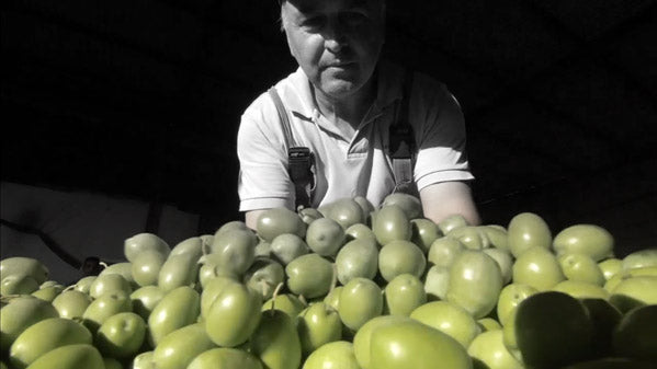 Yianni's Olive Grove - The people behind the magic