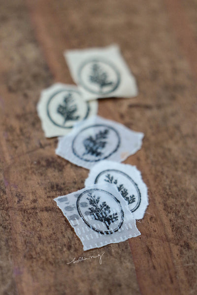 LCN Metal Stamp - Common Wedgelet Fern (Ellipse)