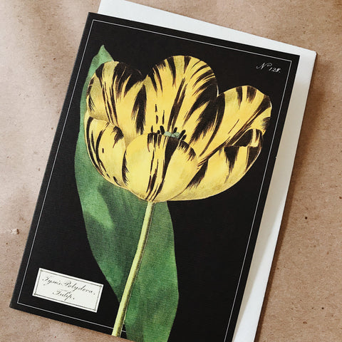 Cavallini Pocket Card - Tulip