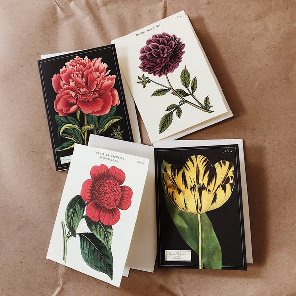 Cavallini Pocket Card - Dahlia