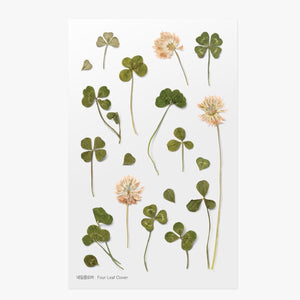 Pressed Flowers Sticker - Four Leaf Clover