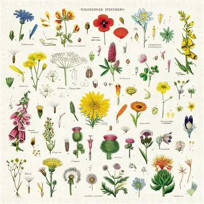 Cavallini 4in1 Vintage Napkins - Wildflowers