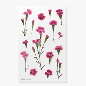 Pressed Flowers Sticker - China Pink