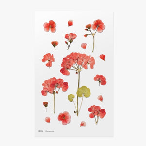 Pressed Flowers Sticker - Geranium