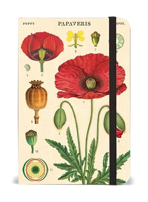 Cavallini Small Notebook - BOTANY