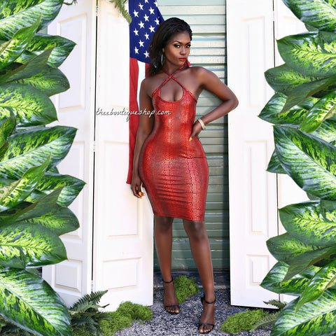 The Allegiance Racy Red Snakeskin Dress