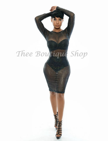 The Monroe Sheer Illusions Dress