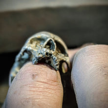 Load image into Gallery viewer, Deserted Jawless Skull Ring