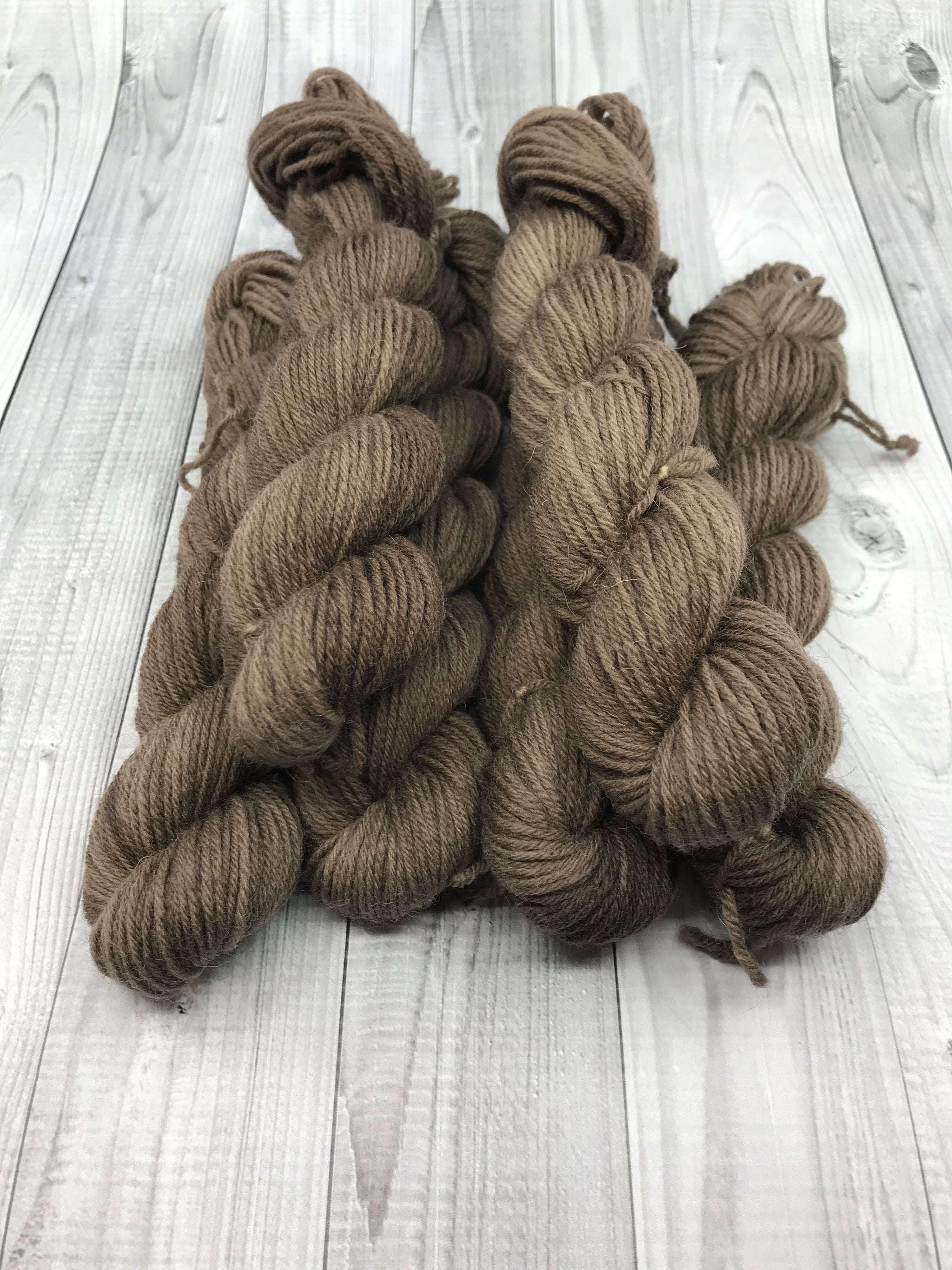Hunter Highland Fingering - 20g Mini Skein- Fall 2019- Fallen Branches