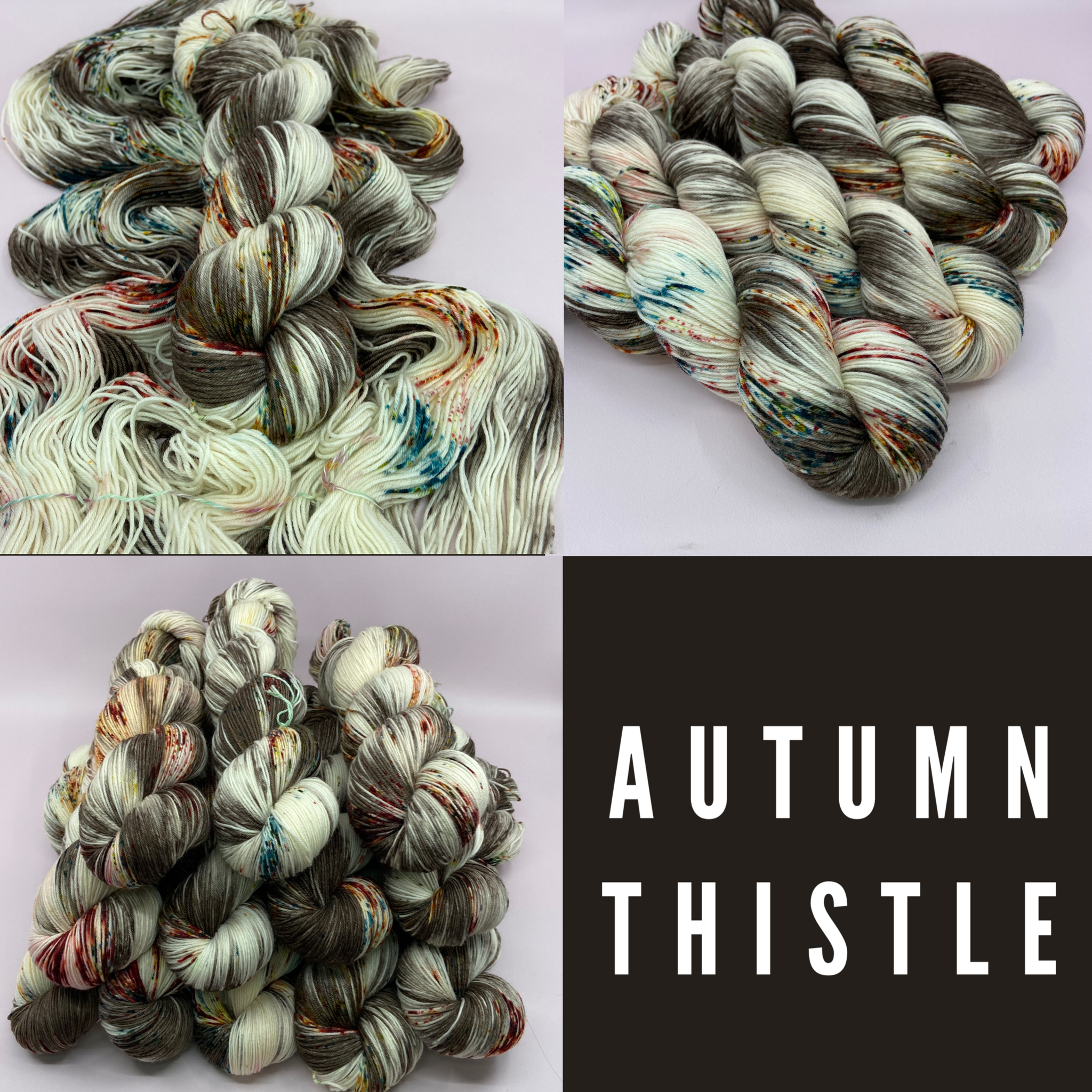 Jimmy Sock- Autumn Thistle