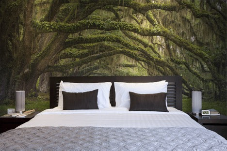 Oak Tree Forest Wallpaper Mural, eazywallz.eu