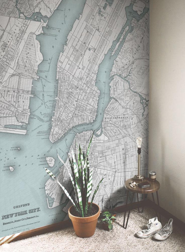 1865 Vintage New York Map Wall Mural-Maps-Eazywallz
