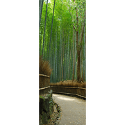Bamboo Forest Walkway Door Mural-Landscapes & Nature-Eazywallz