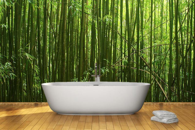 Bamboo stalks Wall Mural-Landscapes & Nature,Zen-Eazywallz