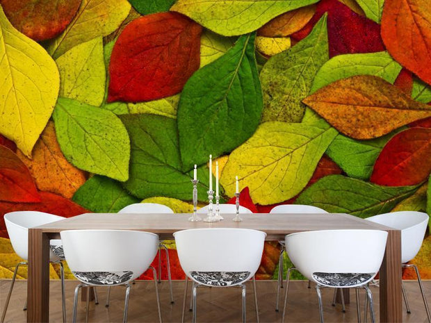 Beautiful leaves Wall Mural-Textures-Eazywallz