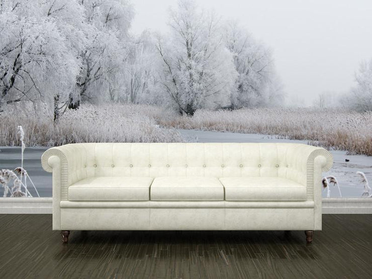 Beautiful winter landscape Wall Mural-Landscapes & Nature-Eazywallz