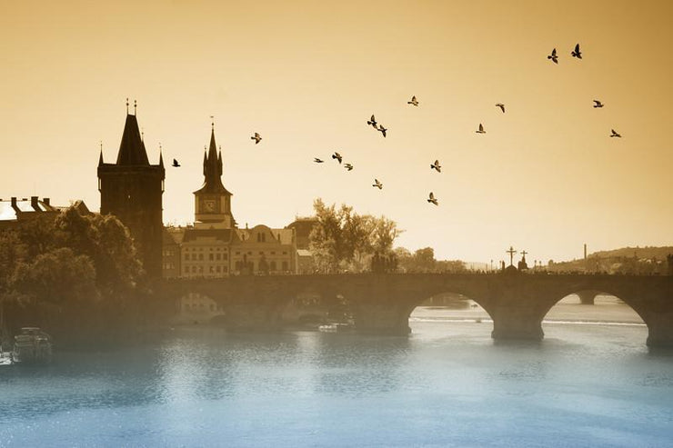 Birds over Charles Bridge in Prague Wall mural Wall Mural-Animals & Wildlife,Buildings & Landmarks,Cityscapes-Eazywallz