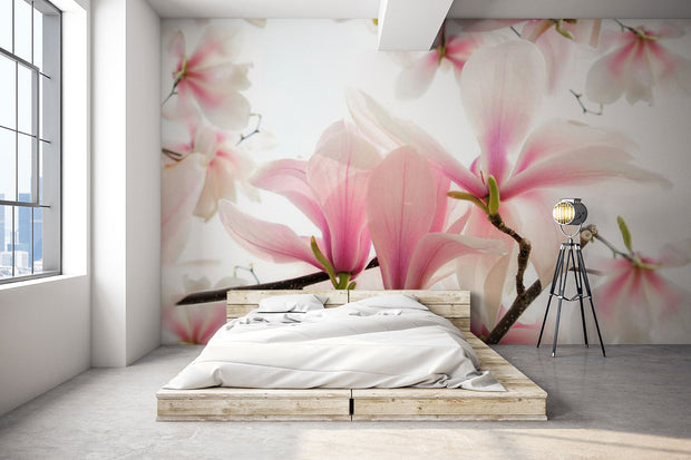 Blossoms of a magnolia tree in spring Wall Mural