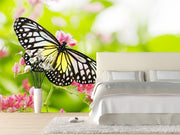 Butterfly on a flower Wall Mural-Animals & Wildlife,Florals,Macro,Featured Category of the Month-Eazywallz