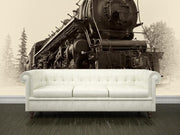 Canadian steam train Wall Mural-Transportation,Vintage-Eazywallz