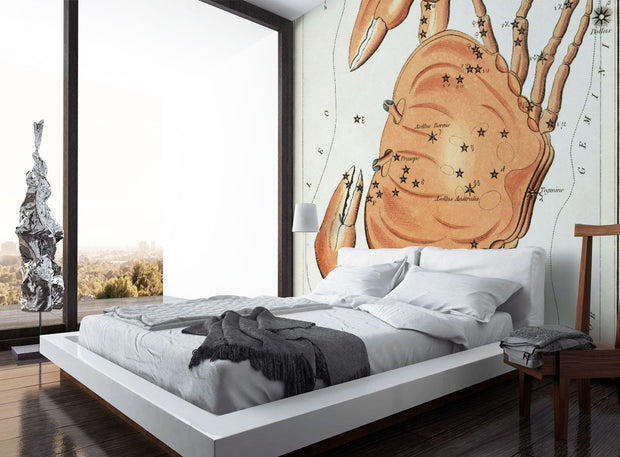 Cancer Sign Wall Mural-astrology-Eazywallz