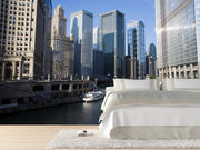 Chicago skyline Wall Mural-Cityscapes-Eazywallz