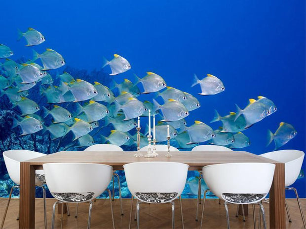 dart fish Wall Mural-Animals & Wildlife-Eazywallz