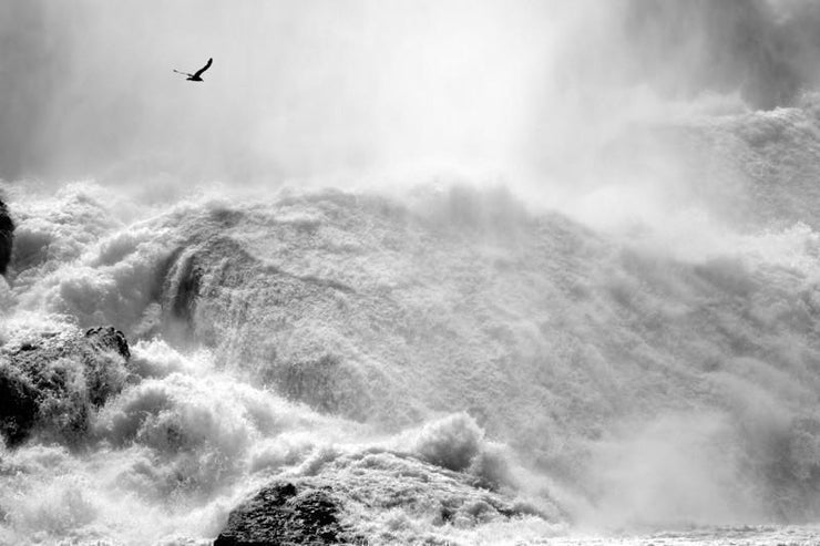 Dramatic Niagara Falls, Canada Wall Mural-Black & White,Buildings & Landmarks,Landscapes & Nature,Staff Favourite Murals-Eazywallz