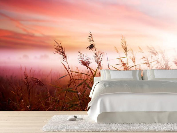 Early Morning Mist Wall Mural-Florals,Landscapes & Nature,Featured Category of the Month-Eazywallz