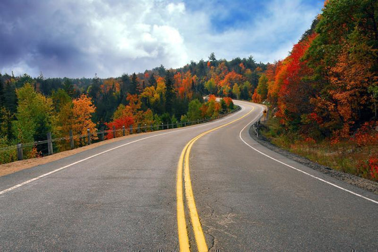 Fall scenic highway Wall Mural-Landscapes & Nature-Eazywallz