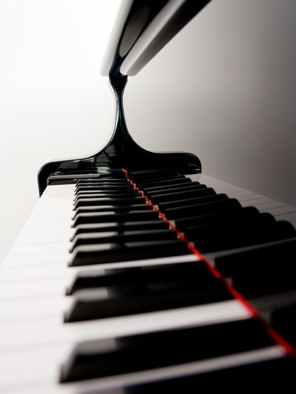 Grand piano keys Wall Mural-Arts,Macro-Eazywallz