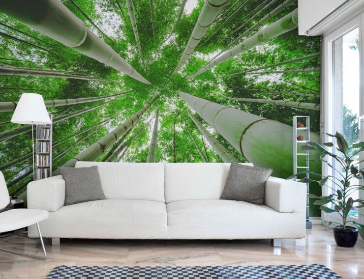 Green bamboo forest Wall Mural-Landscapes & Nature,Zen-Eazywallz