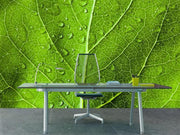 Green leaf texture Wall Mural-Macro,Textures-Eazywallz