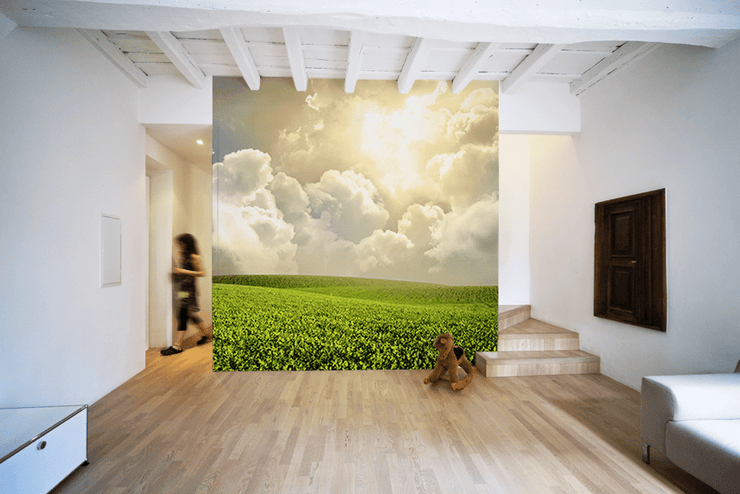 Green meadow under blue sky Wall Mural-Landscapes & Nature-Eazywallz