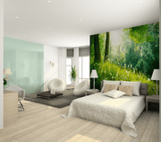 Green Spring Forest Wall Mural-Landscapes & Nature-Eazywallz
