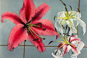 Hand Coloured Lily Wallpaper Mural-Patterns-Eazywallz