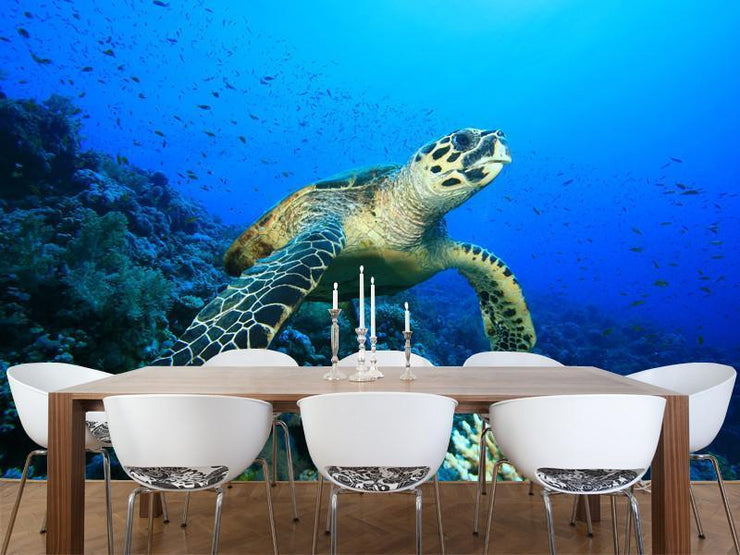 Hawksbill Turtle on a coral reef Wall Mural-Animals & Wildlife-Eazywallz