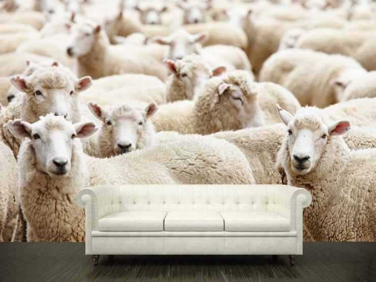 herd of sheep Wall Mural-Animals & Wildlife-Eazywallz