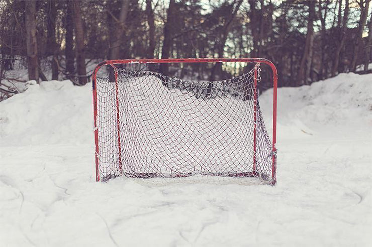 Hockey Net Wall Mural-Sports-Eazywallz